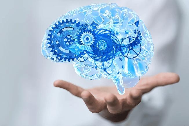 Cerveau et La Négation – Mythe ou Réalité ?